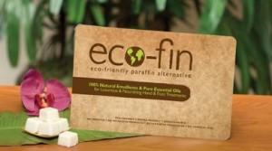 Eco-Fin